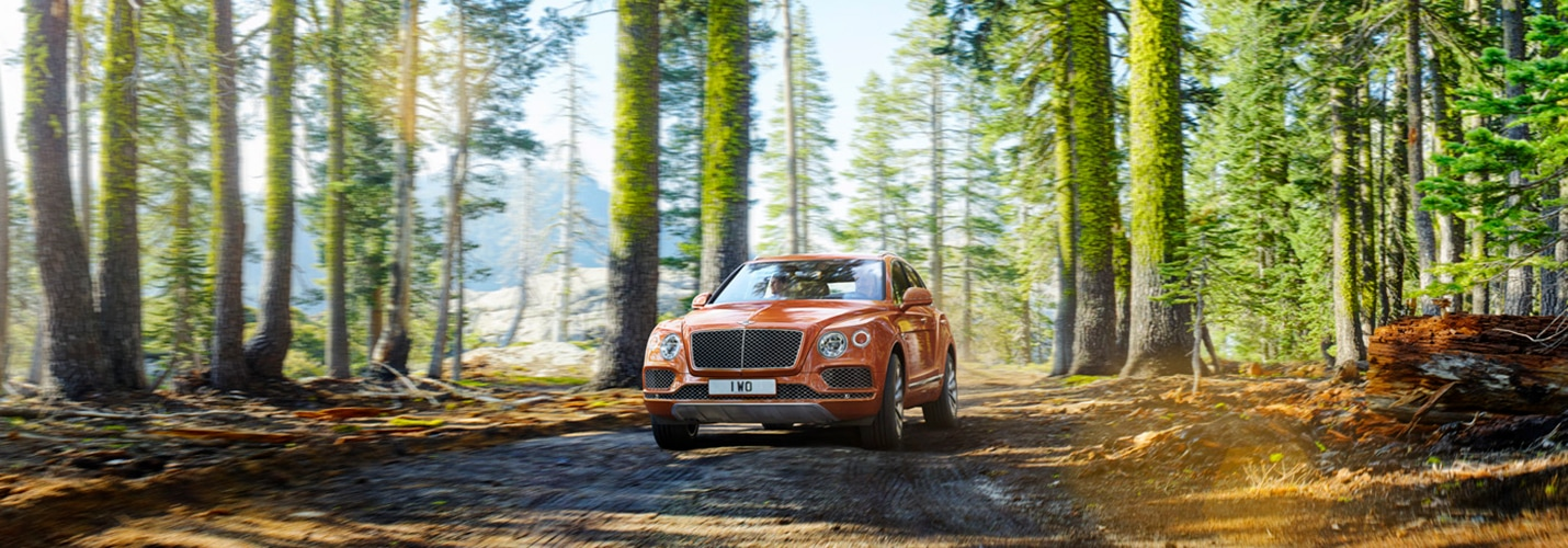 bentley_bentayga_3_0